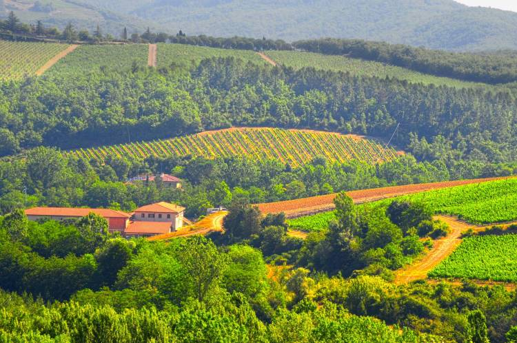 Be awe with Tuscany Chianti Region